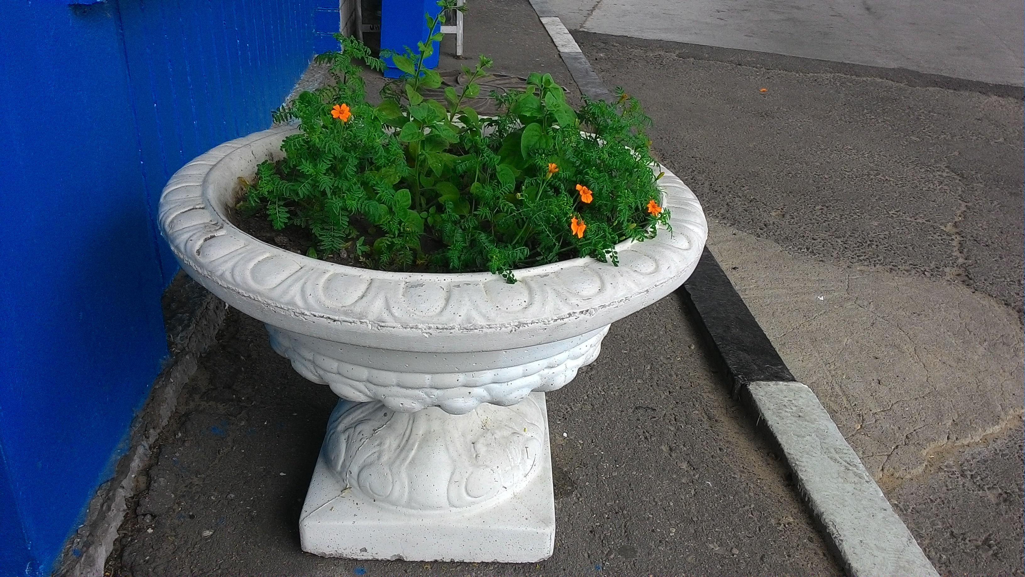 Уличные вазоны для цветов из бетона фото